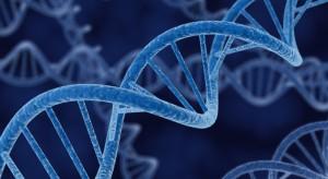 sensibilidad dental - genes 3