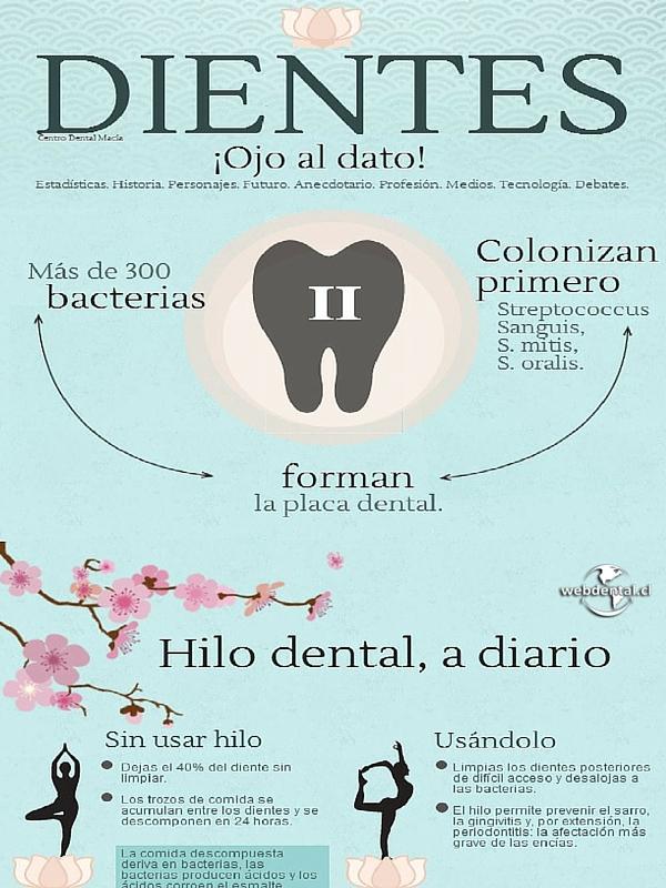 bacterias, placa dental, blog