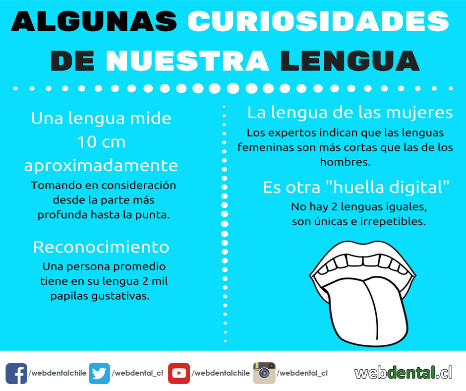 infografia-lengua-lista-blog