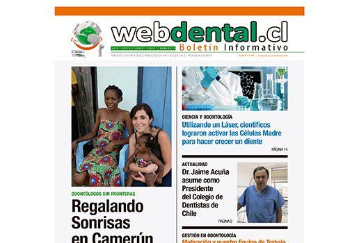 Periodico de Odontologia N° 29